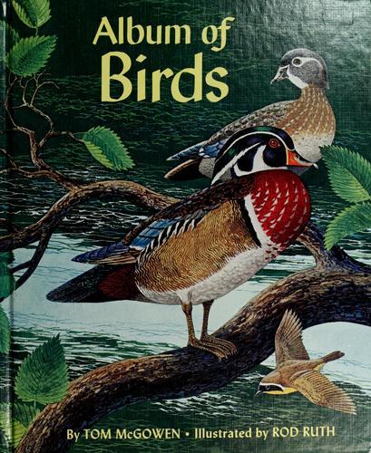 Download Album of birds